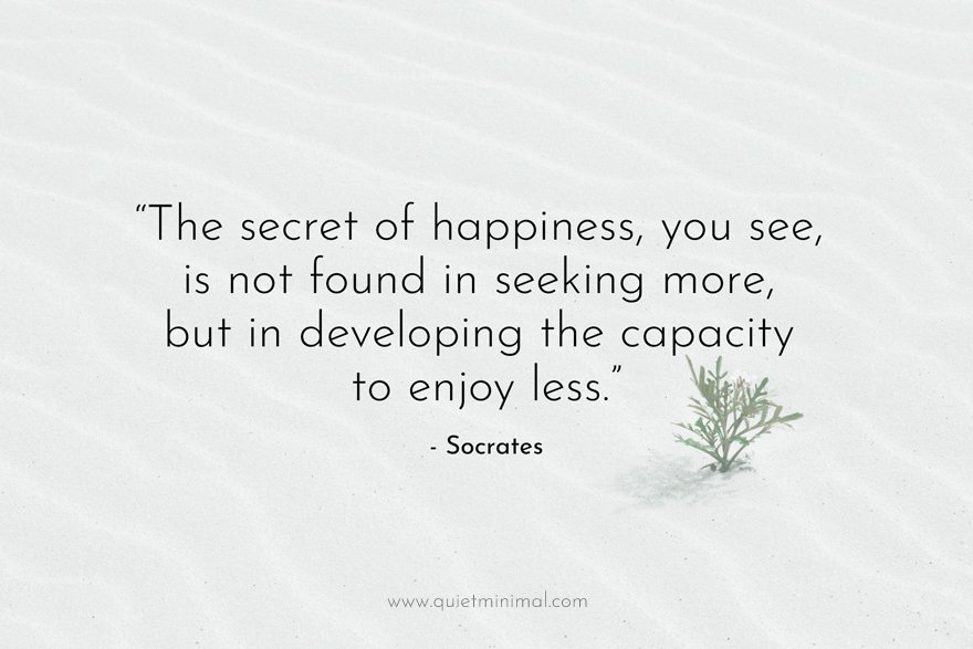 """""""The secret of happiness, you see, is not found in seeking more, but in developing the capacity to enjoy less.""""   - Socrates"""