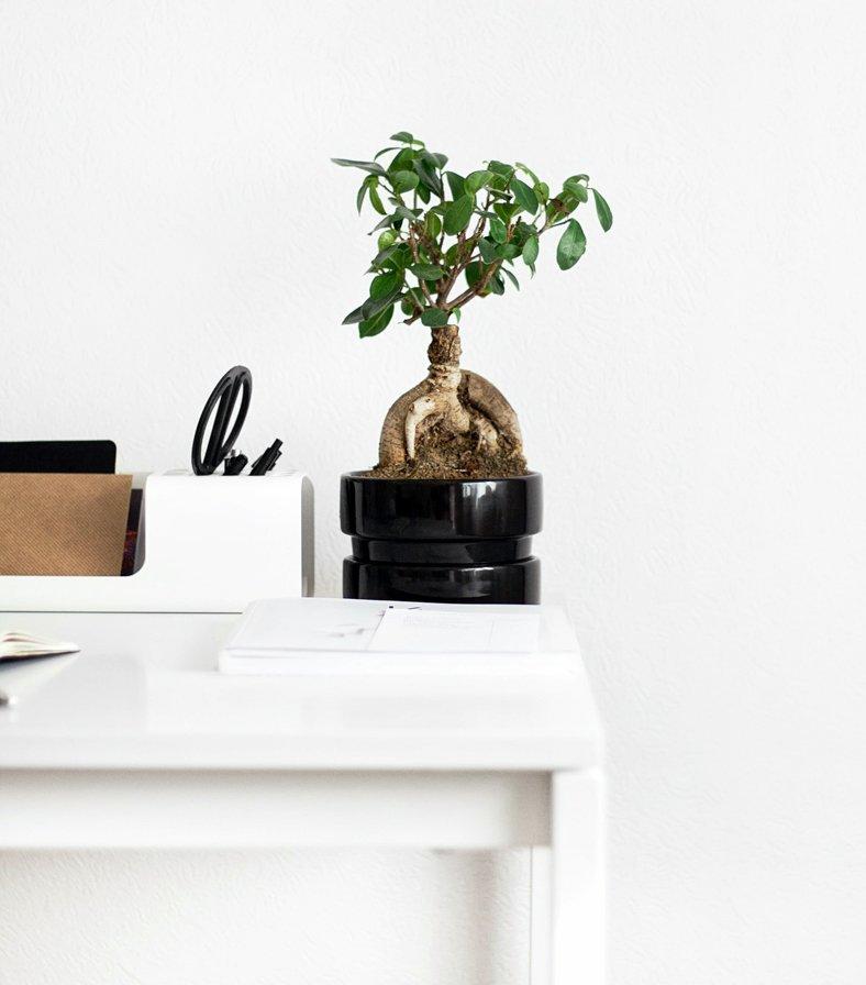 Minimalist Folding Wall Desk